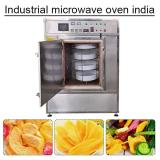Iso Certification Stainless Steel 304 Industrial Microwave Oven India With Self-cleaning